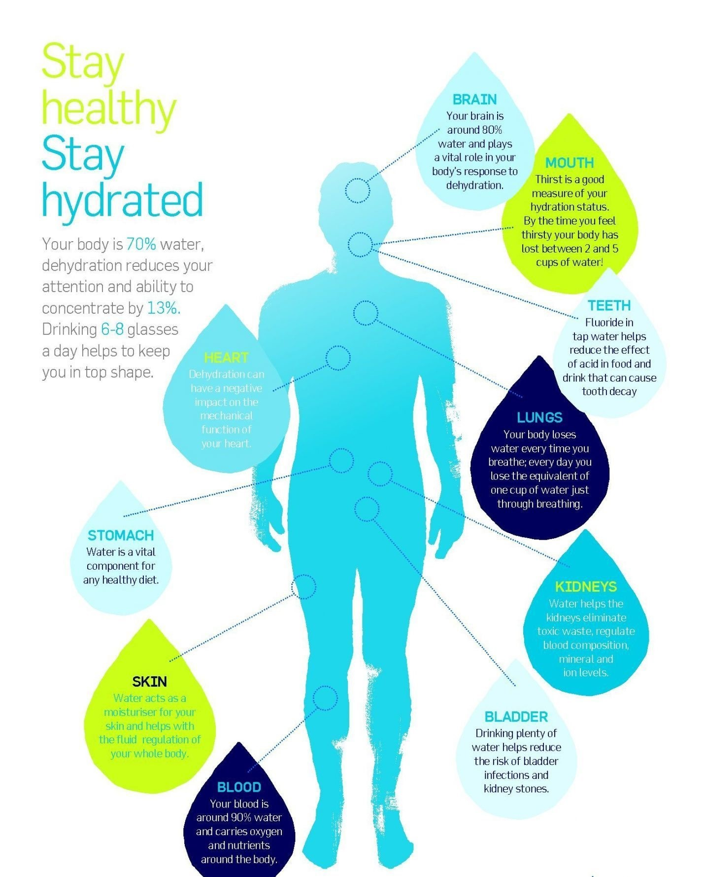 healthy-hydration-starts-with-water-but-does-not-end-there